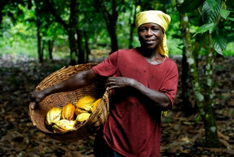 union-cocoa-farmer.jpg